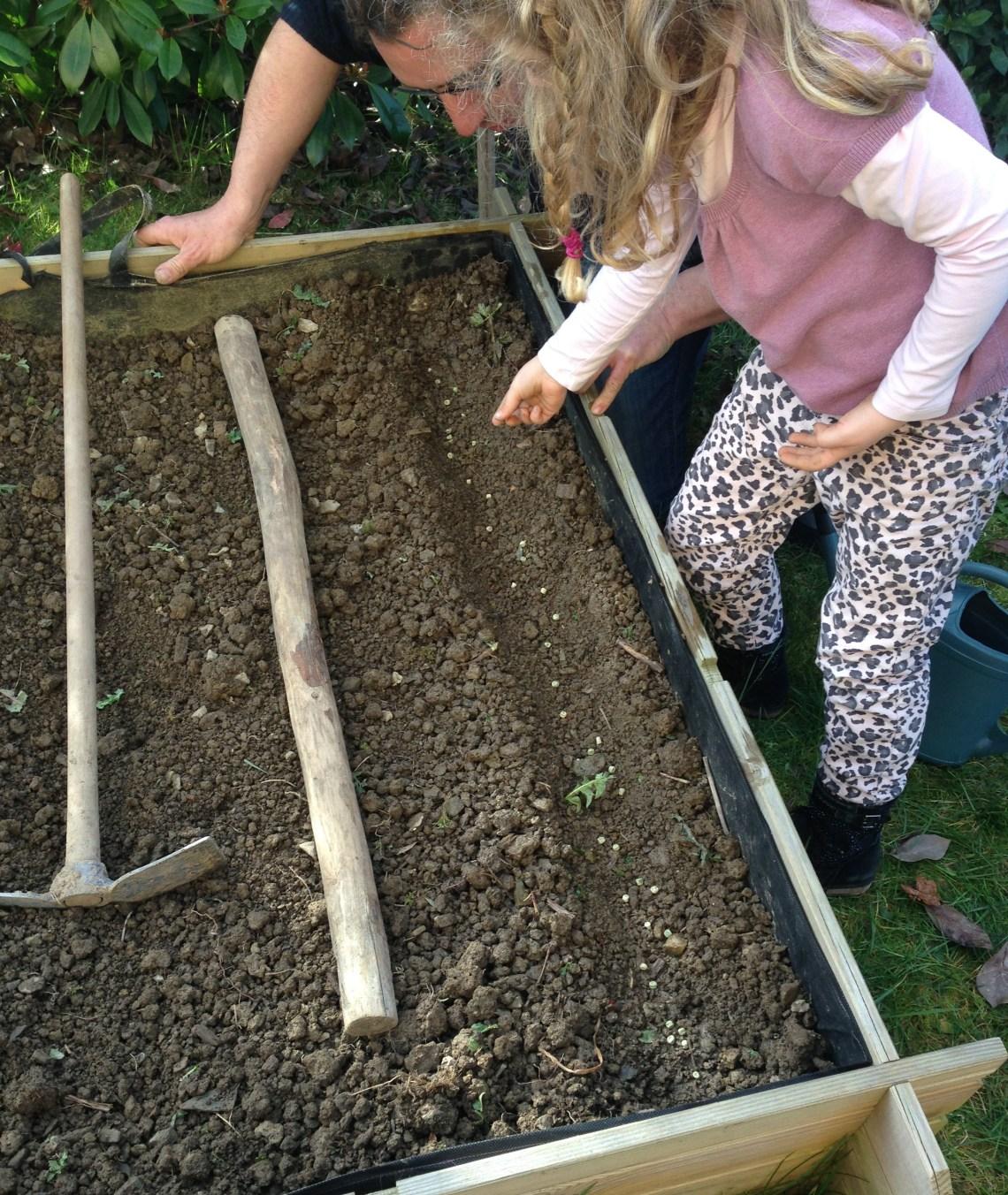 Atelier jardinage d'un potager au carré
