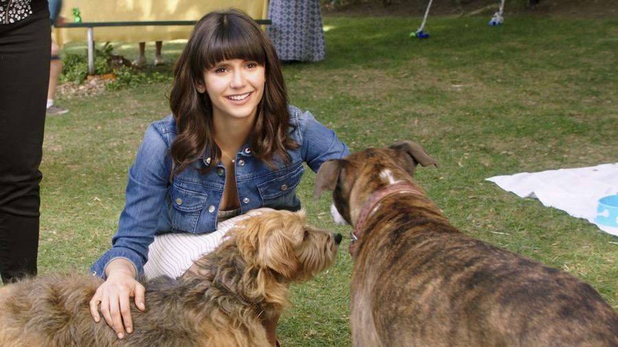Dog days, incontri tra cani che diventano incontri del destino [Trailer]