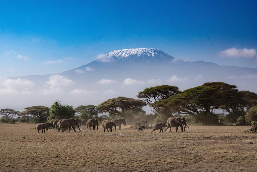 viaggi di nozze in Kenya