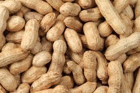 le traitement contre l'allergie aux cacahuètes n'est pas totalement au point