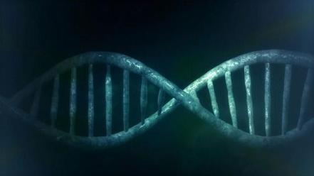reconstitution d'un Chromosome de levure