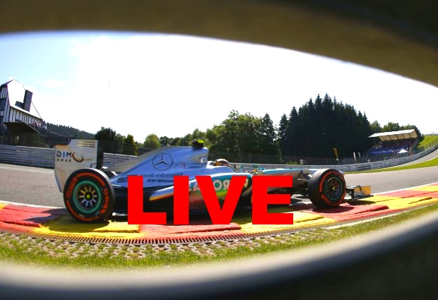GP F1 Hongrie 2014 Streaming