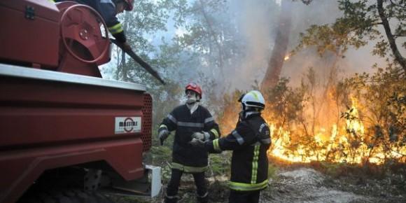 Lutte contre 15 incendies déclenchés en même temps à Jendouba