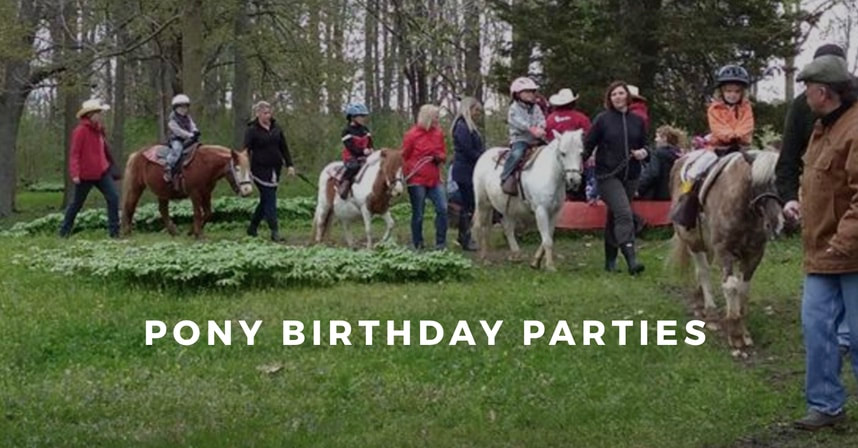 Pony Birthday Party Up To 8 Years Old Tj Stables