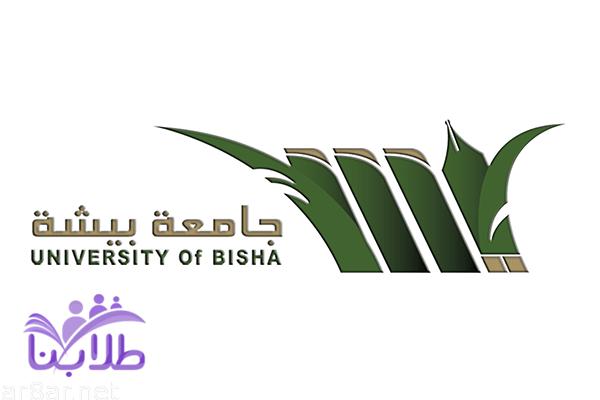 جامعة بيشة