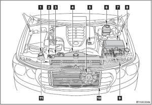 Toyota Land Cruiser: Engine partment  Doityourself