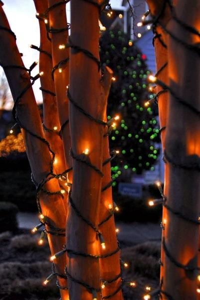 Holiday Lighting 29