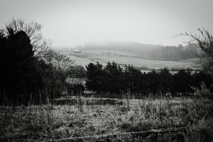 Overlooking fields in a misty rainy day