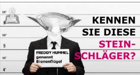 "Steinschlag ""Bienenflügel"" - KS-Autoglas-Zentrum Schöntal-Bieringen"