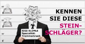 """Steinschlag """"Trümmerbruch"""" - KS-Autoglas-Zentrum Schöntal-Bieringen"""