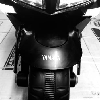 T Max 530 elettrico