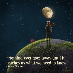 """Nothing ever goes away until it teaches us what we need to know."" -Pema Chodron"