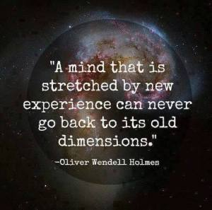 """""""A mind that is stretched by new experience can never go back to its old dimensions."""" -Oliver Wendell Holmes"""