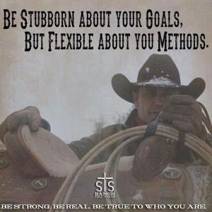 Be stubborn about your goals, but flexible about your methods.
