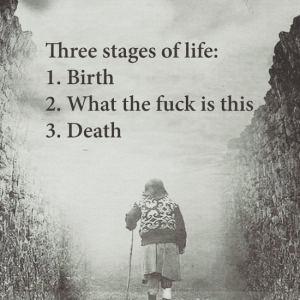Three stages of life: 1. Birth 2. What the fuck is this 3. Death