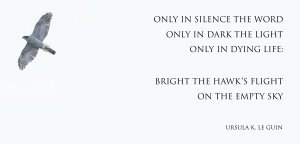 """""""Only in silence the word, only in Dark the Light, only in Dying Life: Bright the hawk's flight on the empty sky."""" -Ursula K. Le Guin"""