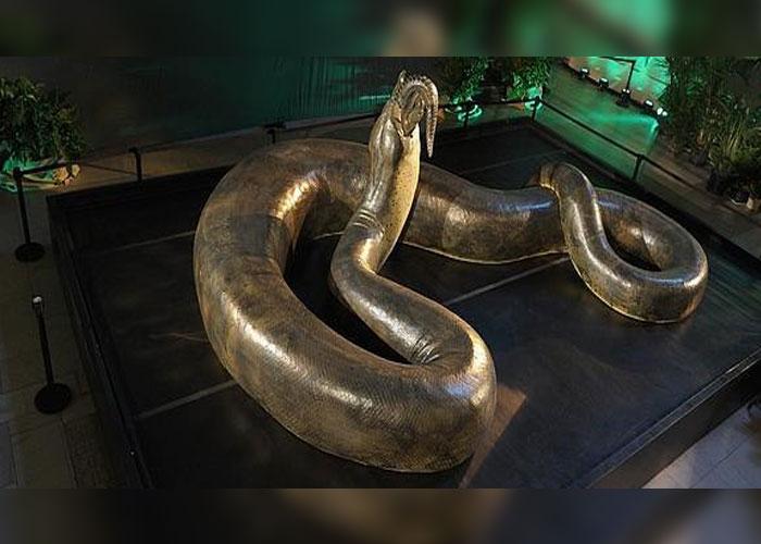 impresionante, la serpiente, prehistorica, 14 metros, gigantesca,