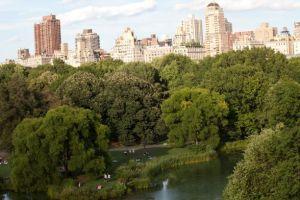 Nouveau Monde - NEW-YORK-c-NYC