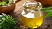 Cannabidiol Oil