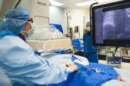 Vascular Surgeon