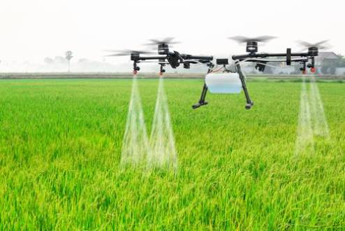 Agriculture   Consumer Sciences drone in Ag