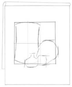 Proportionally drawing garlic bulb. C. Rosinski