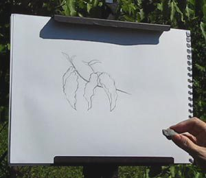 Create your own version of reality expressive line drawing demo C. Rosinski