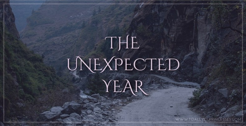 The Unexpected Year - To All You Princesses (www.toallyouprincesses.com)