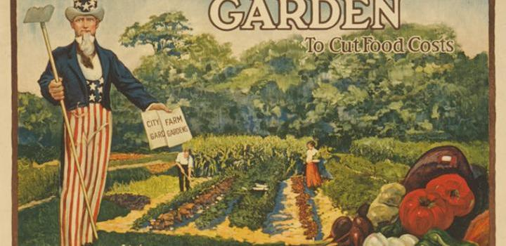 What Are Victory Gardens