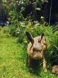 Großdiorama eines Waldrandes mit Hase