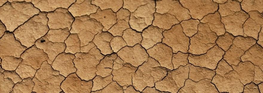 Pflege trockene Haut