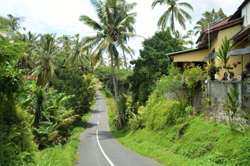 Roadtip