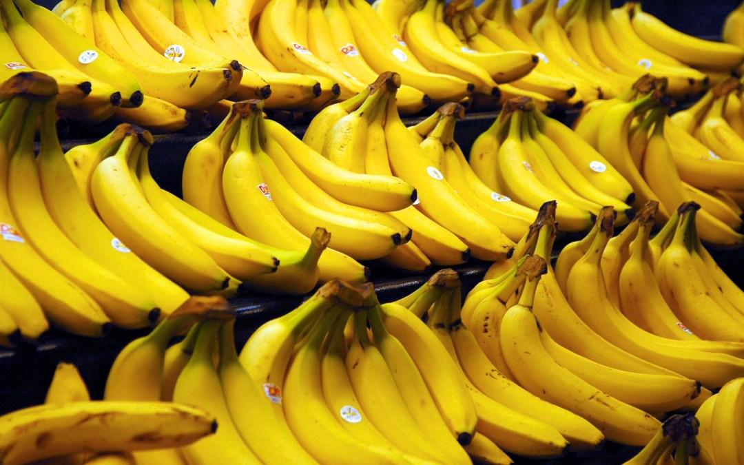 Bananas! Change WordPress import XML to GZip.