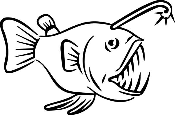 angler fish angler fish carnivore fish coloring pages angler fish