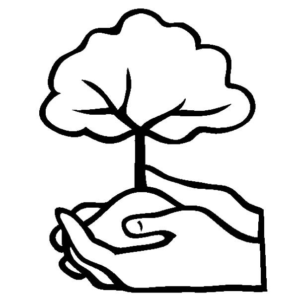 arbor day plant a tree coloring pages plant coloring pages