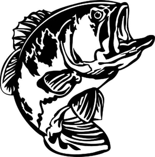bass fish bass fish open his mouth wide coloring pages