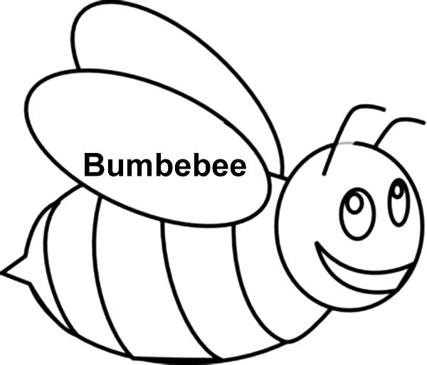 bee bumble bee outline coloring pages bumble bee outline coloring