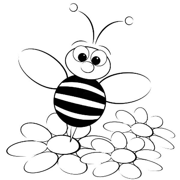 bumble bee bumble bee standing on flower coloring pages