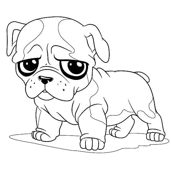 cute little bulldog coloring pages best place to color