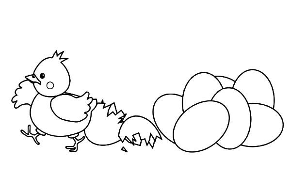 chicken pictures to color chicken coloring pages color page
