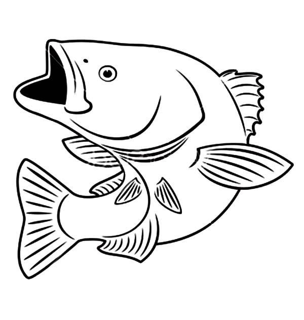 bass fish sniper bass fish coloring pages 2