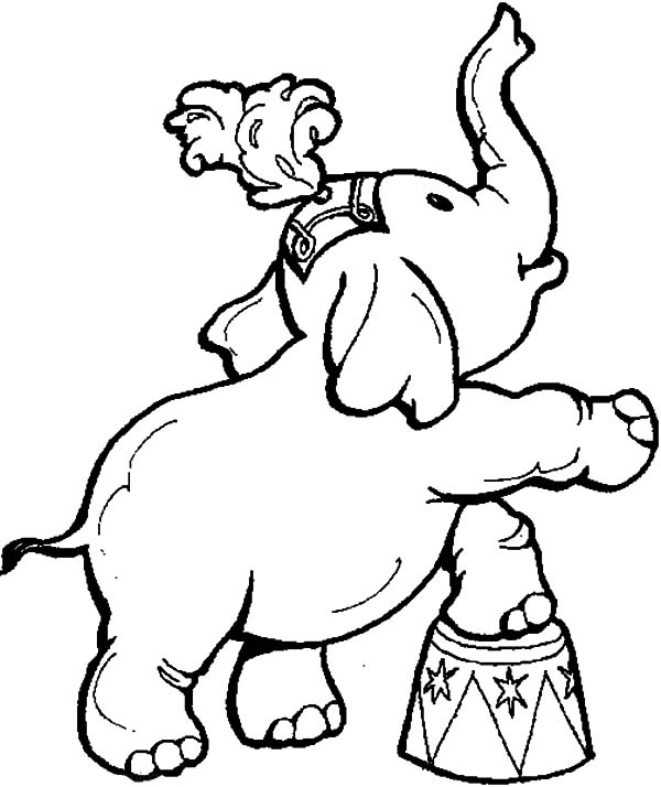circus and carnival animal show coloring pages best place to color