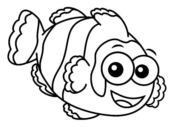 clown fish with big eyes coloring pages best place to color