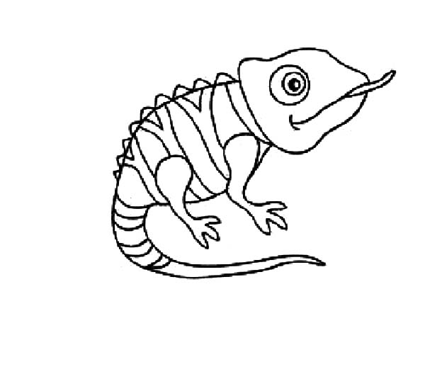 Disney Tangled Pascal The Chameleon Coloring Pages Best Place To Color