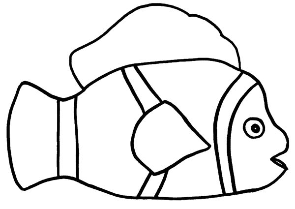 how to draw clown fish coloring pages best place to color
