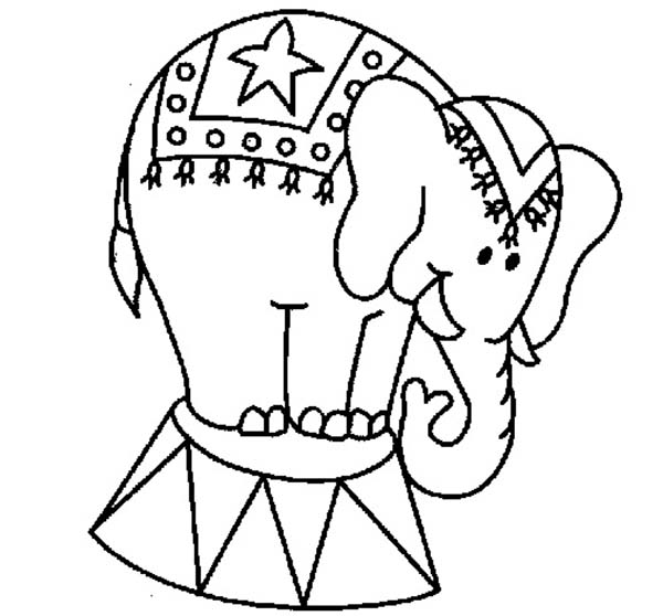 performing circus elephant coloring pages best place to color