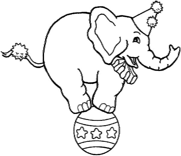 picture of circus elephant coloring pages picture of circus