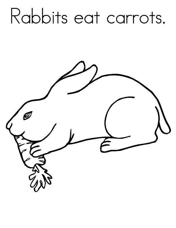 tags rabbit rabbit coloring picture rabbits pictures to pin on