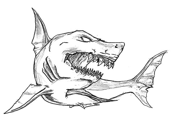 shark jaws sketch coloring pages best place to color