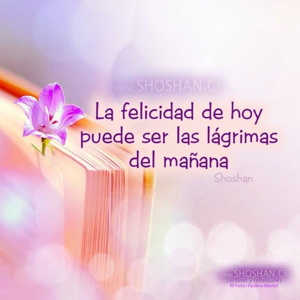 La felicidad de hoy puede ser las lágrimas del mañana.